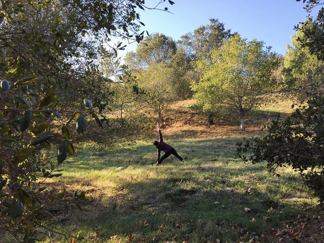 3 Days Thanksgiving Yoga Retreat in California, USA