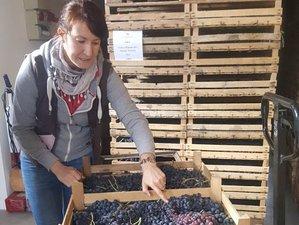 2 Day Wine Tasting and Walking Tour in Verona, Veneto