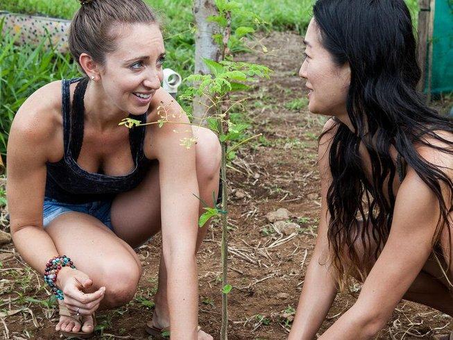 16 Days 200-Hour Yoga Teacher Training in San Ramon, Costa Rica
