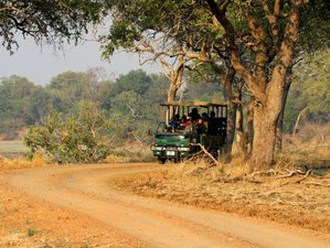 5 Days Camping South Luangwa Safari in Zambia