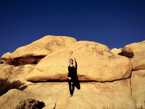 4 Days Weekend Meditation and Yoga Retreat in California, USA
