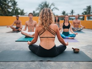 8 Tage Nährende Meditation und Yoga Retreat in Weligama, Sri Lanka