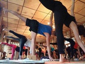 7-Daagse Meditatie en Yoga Retreat in Chiang Mai, Thailand