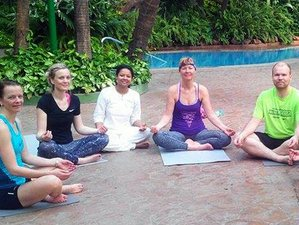 21 Days Basic Yoga Teacher Training India