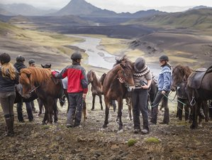 10 Day Forces of Nature: The Full Fjallabak Special Horse Riding Tour