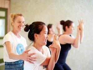 5 días retiro de yoga y meditación de Día de Acción de Gracias en Maine, Estados Unidos
