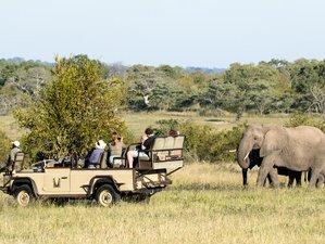 6 Days Sabi Sand and Timbavati Private Safari in South Africa