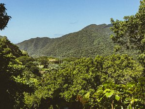 7 Day Master Cleanse Detox Program with Yoga, Various Workshops, and Hiking in Magdalena