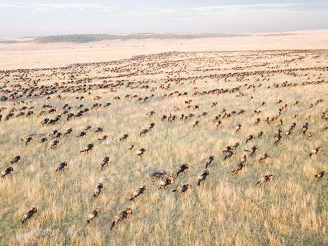 10 Days Family Kenya Safari