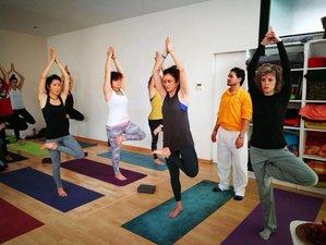 29 Days 200-Hour Hatha Yoga Teacher Training in Netala, India