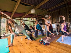 7 Day 50 Hours Sequencing and Assists Yoga Course in San Marcos La Laguna, Sololá