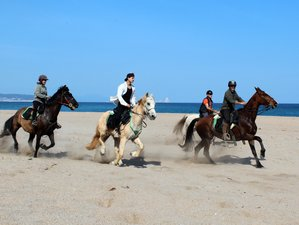 5 Day Tasting the Costa Brava Trail Horse Riding Holiday in Llabià, Girona