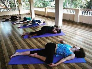 30 Tage Anti-Sucht Programm, Naturheilkunde, Detox und Yoga Retreat in Dharamsala, Indien