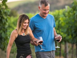 7 Day Wine Discovery Vacation in Washington and Oregon