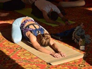 26 Day 200 Hours Hatha Yoga Teacher Training in Rishikesh, India
