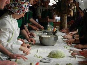 6 Day Food & Wine Holiday between the Two Gulfs Sorrento and Amalfi Coast, Massa Lubrense