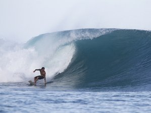 5 Days Authentic Mentawai Surf Camp