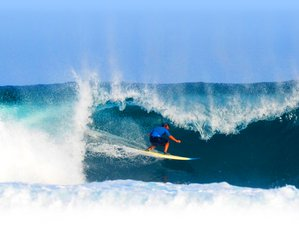 11 Day Surfari in Krui, Lampung