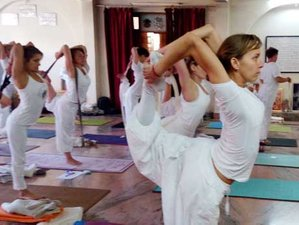 21 Day 200-Hour Ancient Style Hatha Yoga Teacher Training in Rishikesh