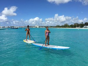 7 Days Beginner SUP Camp in Barbados