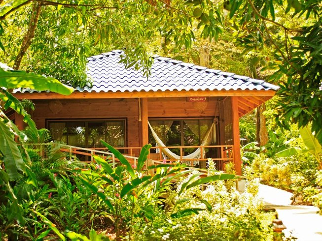 15 Days Surf and Yoga Holiday in Costa Rica