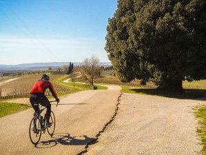 7 Day Guided Bike Tour in Tuscany, Italy
