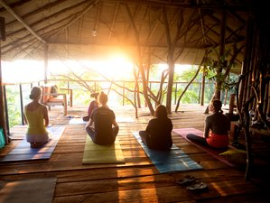 4-Daagse Meditatie en Yoga Retreat in Sri Lanka