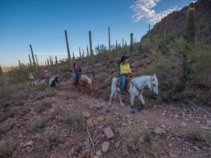 8 Day Horse Riding and Ranch Vacation in Arizona, USA