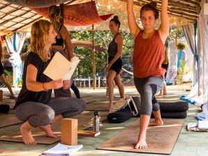 8 Day Beginners Yoga and Meditation Retreat in Canacona, Goa