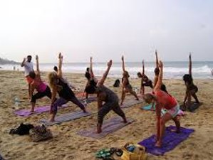 3 Days Sightseeing Tour and Yoga Holiday in Alleppey, India
