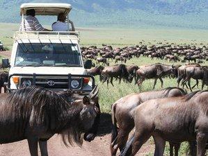 3 Days Masai Mara Game Reserve Safari in Kenya