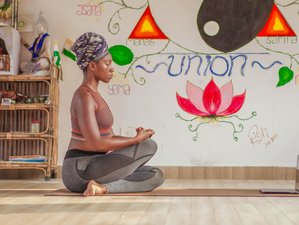 Self-Paced 200-Hour Online Therapeutic Holistic and Indian Ayurvedic Yoga Teacher Training