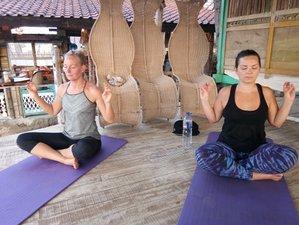 7 Days Wellness Detox, Meditation, and Yoga Retreat in Bali, Indonesia