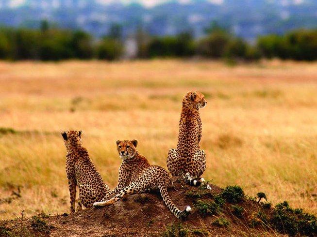 7 Days Walking Safari in Tanzania