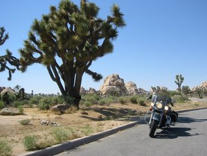 "19 Day ""Western Highlights"" Guided Motorcycle Tour USA"