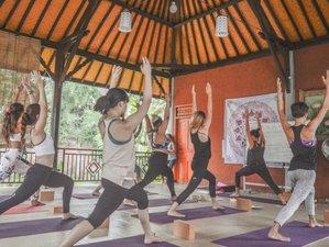 25 Tage 200-Stunden Yogalehrer Ausbildung in Gianyar, Indonesien