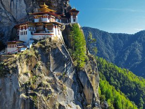 7 Day Tiger Nest Monastery Yoga and Cultural Holiday in Bhutan