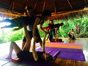 21-Daagse Wildlife Redding en Yoga Retraite in Puntarenas Province, Costa Rica
