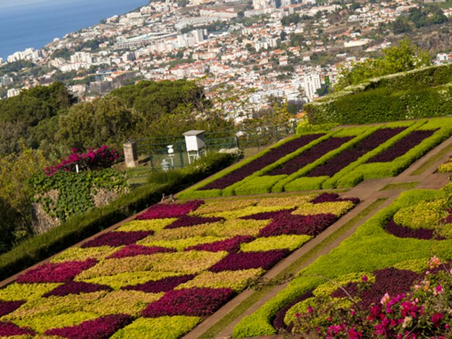 7 Days Culinary Vacations in Portugal