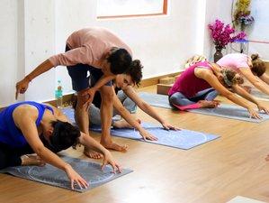 29 Days 300-Hour Yoga Teacher Training in Rishikesh, India