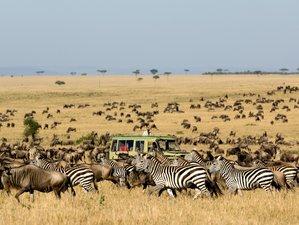 6 Days Lake Manyara, Serengeti, Ngorongoro Crater, and Walking at Mto wa Mbu Safari in Tanzania