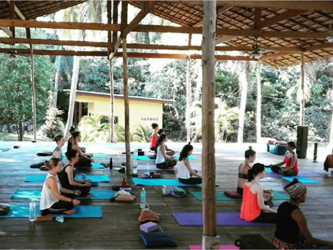 13 Days Awakening Detox and Yoga Retreat in Thailand