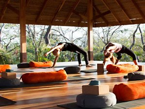 15 Day Yoga Tour and South India Odyssey