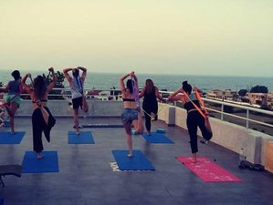 17 Day 200 Hour Vinyasa Yoga Teacher Training in Crete Island