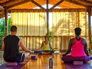 8 Day Bodhi Sessions: Adult Surf and Yoga Camp in Uvita, Osa