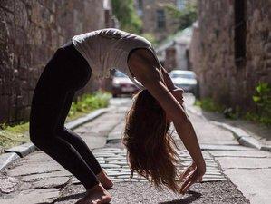9 Day 50-Hour Comprehensive Online Yin Yoga Teacher Training (3 weekends online)