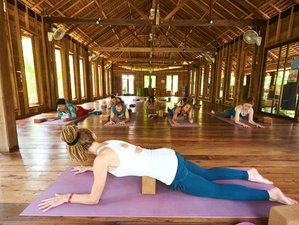 9 Day Relaxing Yoga and Meditation Holiday in Koh Yao Noi, Phang Nga