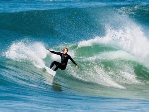 14 Tage Surfcamp in New South Wales, Australien