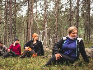5 Day Arctic Silence Yoga Retreat in Lapland