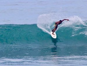 15 Day VIP Surfari Tour in Costa Rica